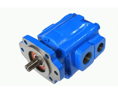P30/31 Cast Iron Bearing Gear Pump