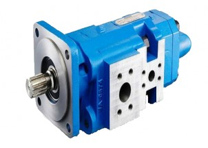 P315 Cast Iron Bushing Gear Pump