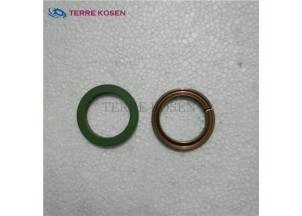 P51 pump spare parts 391-2585-009 ring seal