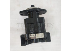 Hydraulic gear pump P330 Bushing pump P330A597FYAB17-25