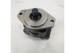 Hydraulic gear pump P330 Bushing pump P330A597FYAB20-25