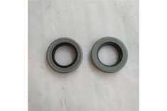 391-2883-094 Hydraulic Gear Motor Lip Seal