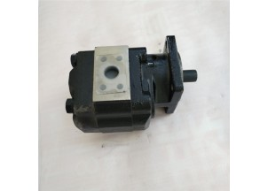 Hydraulic gear pump P51A542BEVU15-65