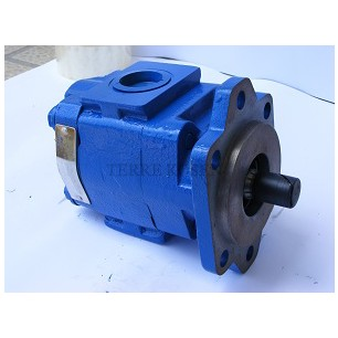 Bearing pump P30 3129125119 P30B-505BIOM17-25DOG12-1