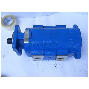 Bearing pump P51 3139640035 P51B578BY*OM17-7DOSEWR0810