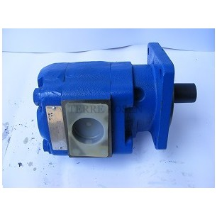 Bearing Pump P75 Series 3169112408 P75A298BEON17-7