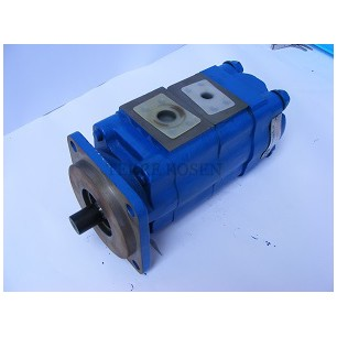 Bearing Pump P75 Series 3169122209 P75B278BIOS20-7DOG10-1
