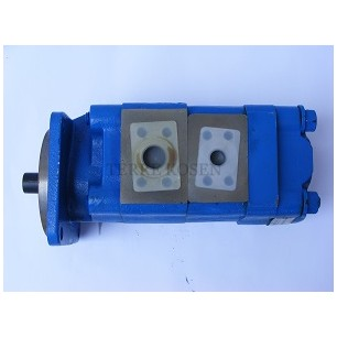 Bearing Pump P75 Series 3169320389 P75B298BION*20-7B*OM*15-1