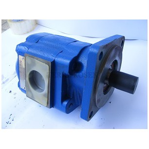 Bearing Pump P76 Series 3169620105 P76B278*BION17-7D