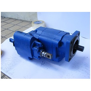 G101 Series Dump Pump G101-R MS-07