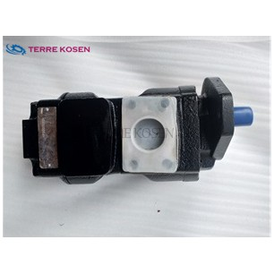 PGM620 Gear Motor 7029211012 PGM620A0160CT1D7ND5D6B1B1C4