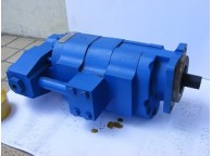 Repair of Gear Pumps