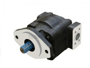 P350 series pump of cast iron bushing design