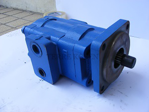 Bearing pump P51 3139630008 P51B498BI*UK12-7CUK12-1CUK12-1