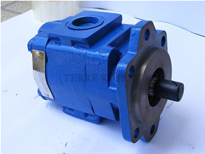 PGM620 Gear Motor 7029210031 PGM620C*0230AM8L3VE5E5R***G2